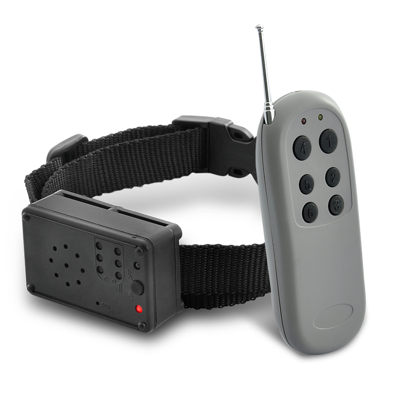 Wholesale Shockless Dog Audio Training Collar with Remote Control