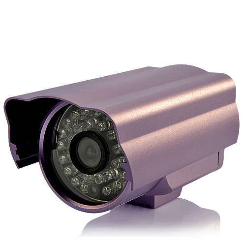 1/3 Inch SONY EXview HAD CCD II Security Camera (30 IR LEDs, Nightvision, 650 TVL)