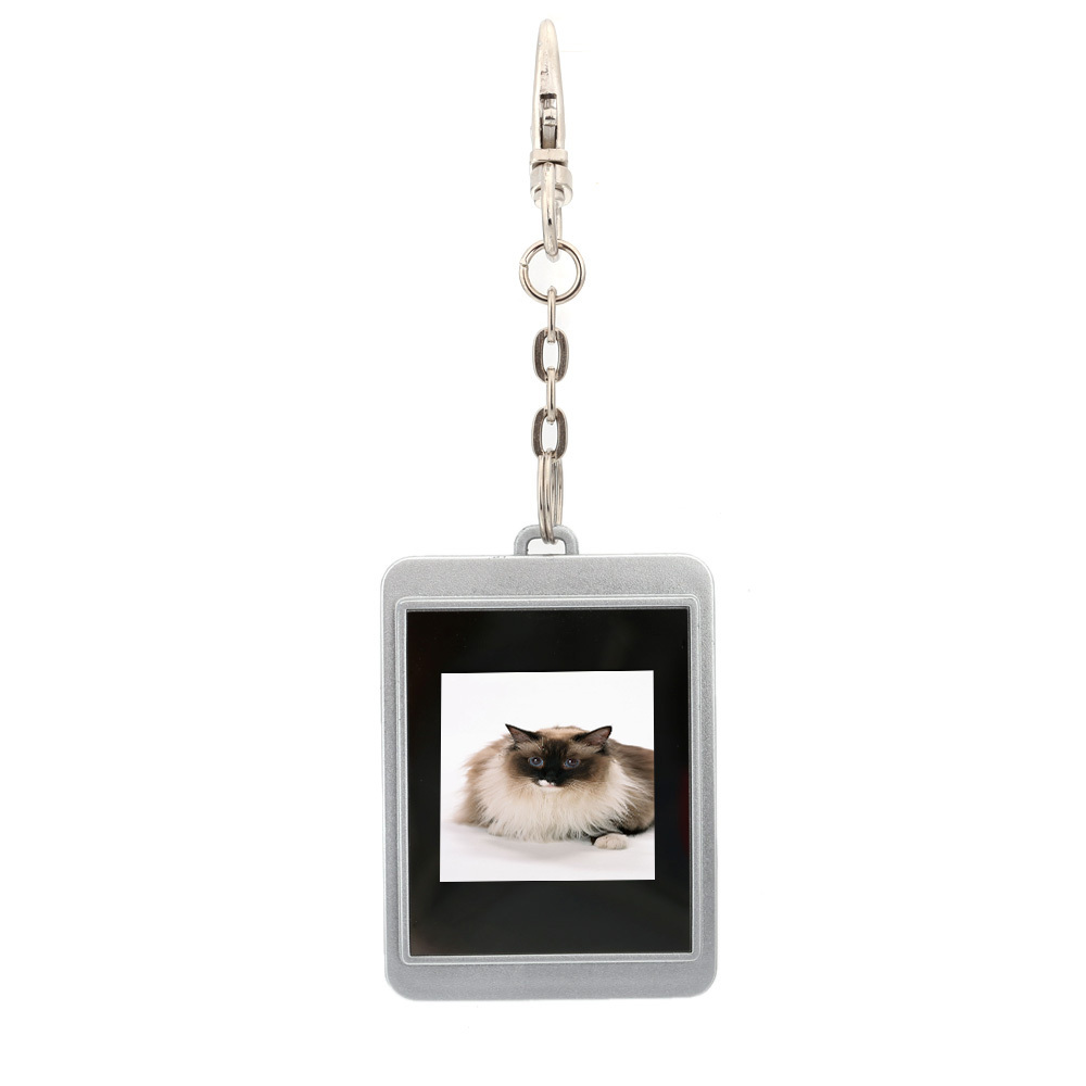 Camera photo plusbuyer limited mini keychain digital picture frame 15 inch cstn screen silver jeuxipadfo Choice Image