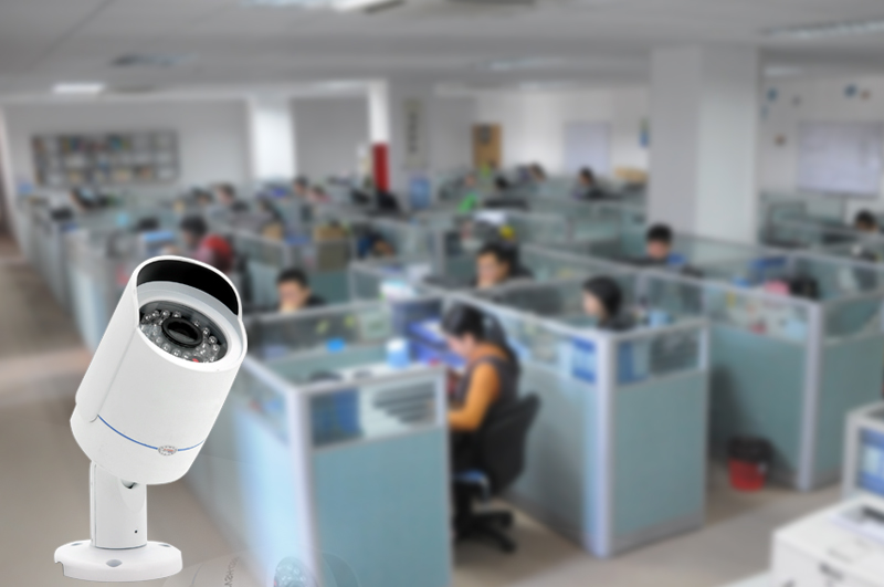 Face Recognition Smart Camera (1/3 Inch SONY Super HAD CCD II, 800TVL, 4.2mm Lens)