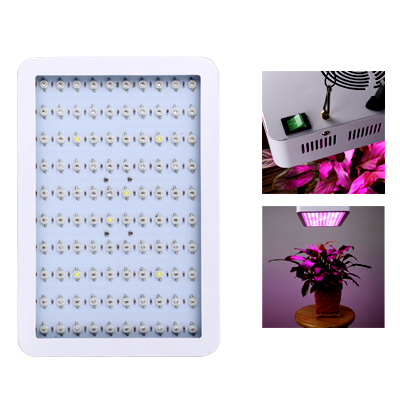 Wholesale LED Plant Grow Light for Vegetable/Flower (140W, 2900 Lumen, Red/White/ Blue LEDs, 50000 Hour Life Span, 100 LEDs)