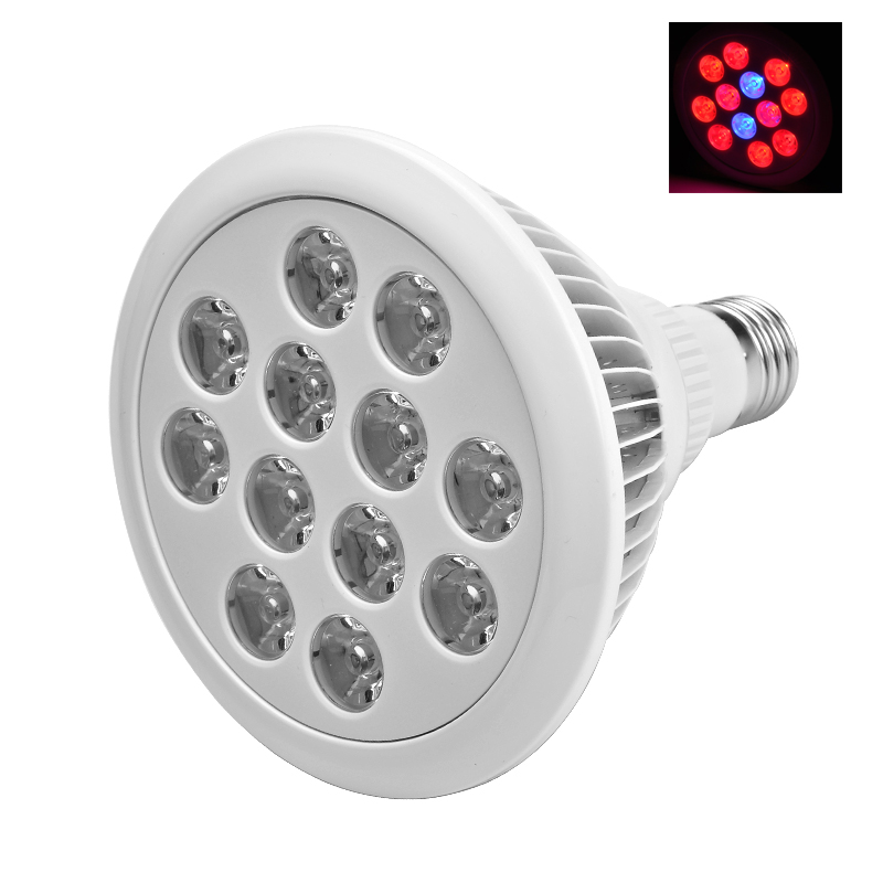 Wholesale E27 LED Grow Light (24W, 7x 630nm Red LEDs, 3x 660nm Dark Red LEDs, 2x 460nm Blue LEDs)
