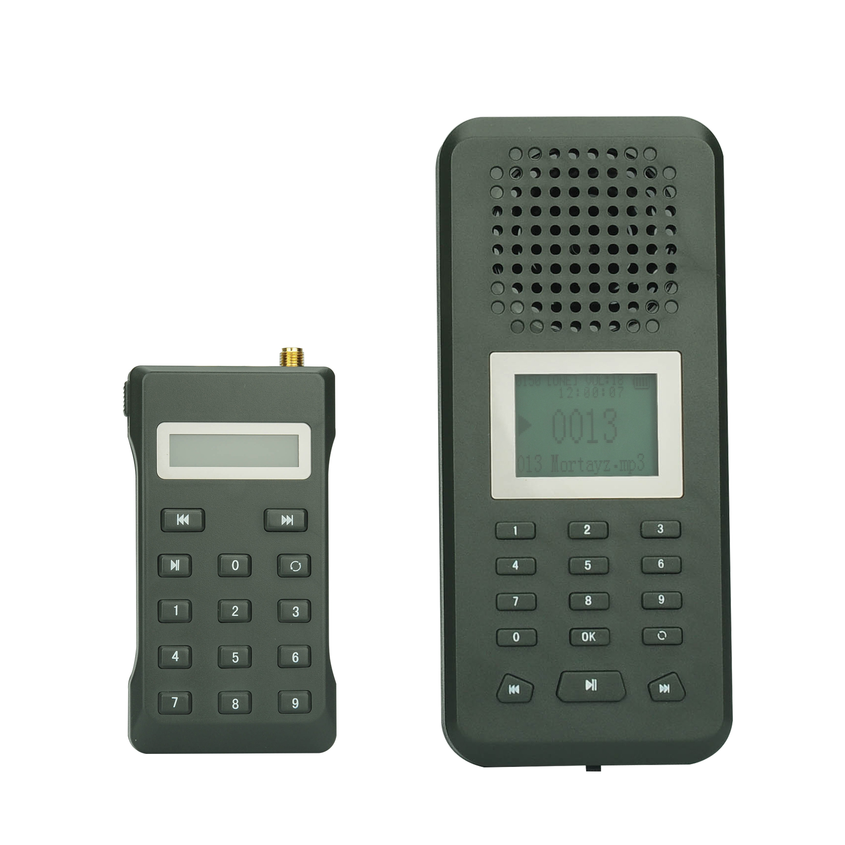 Wholesale Digital Hunting Bird Caller (Remote Control, 20W Speaker, 150 Bi