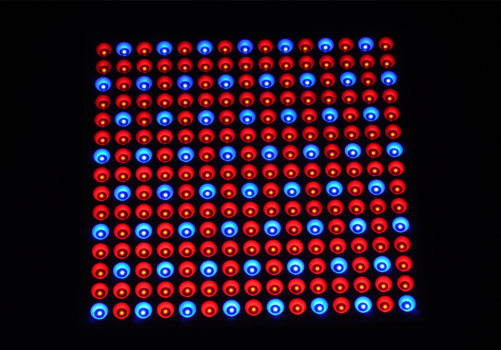 Wholesale Surface Mounted 225 LED Grow Light (165 Red LED + 60 Blue LED, 45W)